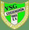 VSG 1960 Cossengrün e.V.-1193938813.jpg