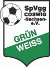 SpVgg Grün-Weiß Coswig e. V.-1198592364.jpg