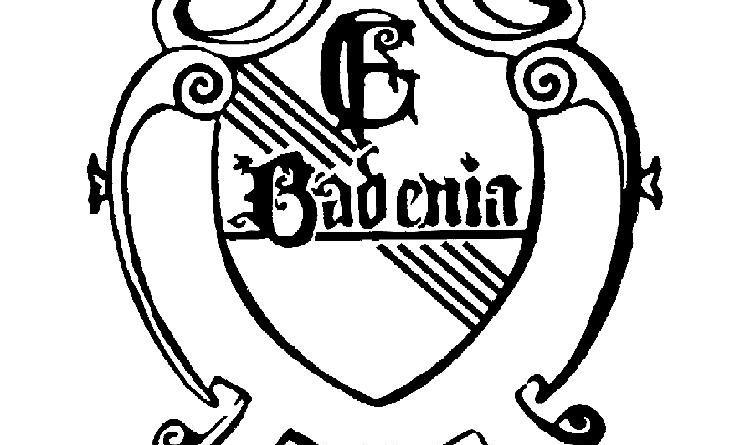 FC Badenia Rohrbach a.G. 1920 e.V.-1200945175.jpg